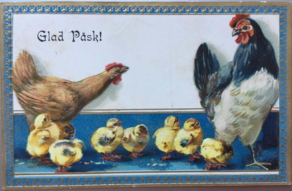 Antikt påskkort. Tupp, höna och 8 kycklingar.